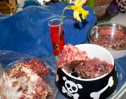 Breakfast for the kids: Raw beef