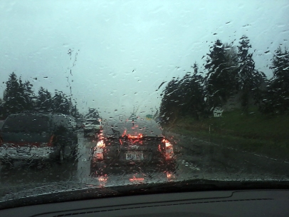 seattle rain drive