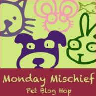 Monday Mischief