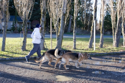 Jogging two doggies
