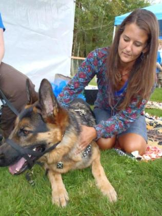 Leo gets a doggie massage at the Whatcom Humane Society's Dog Days of Summer event, 2012