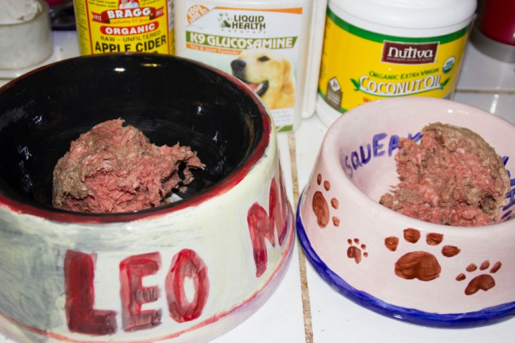 raw-feeding dogs safely