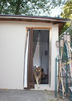 Eventually, we'll put up a real doggie door, but this curtain works for now.