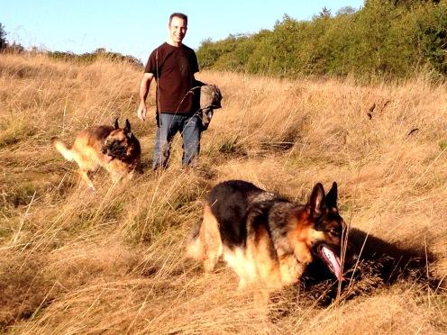 Off leash in the Crime Scene Field