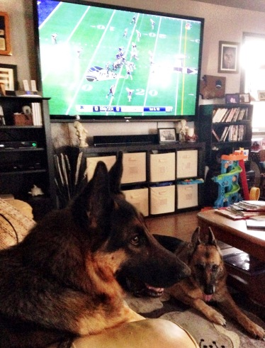 Richard German (shepherd) and Miashawn cheer on the Seahawks
