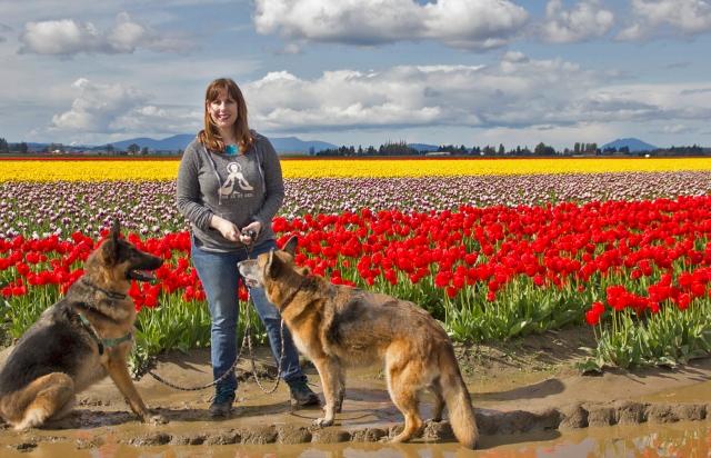 Kari and Dogs