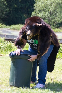 Bear gets into the trash