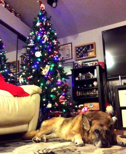 Mia under the tree