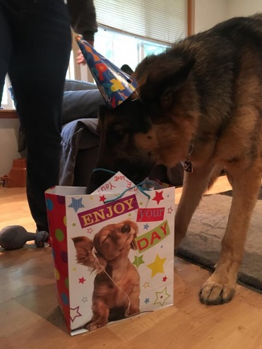 Sniffing out the gifties