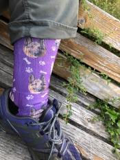 Sock in shoe